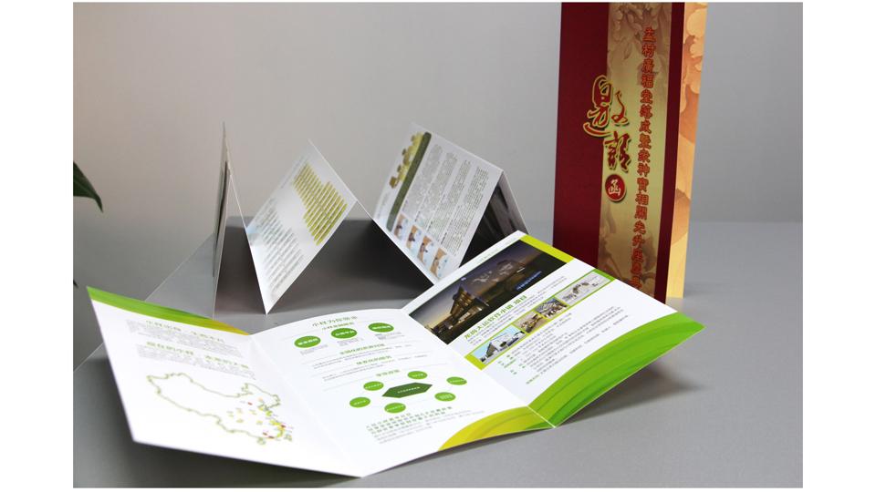 高品质飞印网三折页印刷制作图片效果